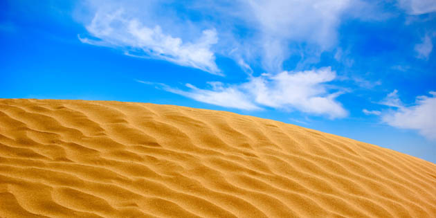 Handling the Media and Public Speaking